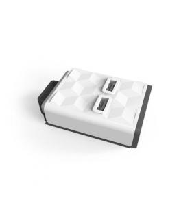 PowerStrip Module USB moduł USB kompatybilny z listwą PowerStrip Modular
