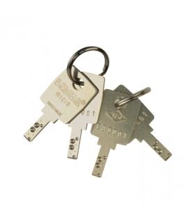 Zestaw kluczyków dodatkowych (2 szt.) dla artykułów 75520-39, 75521-39 75891-39