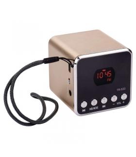 Soundbox EMOS TR533G złoty EMOS E0068