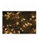 Dekoracje 288 LED kulki 2,4m IP44 WW, TIMER EMOS ZY2033T
