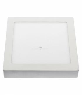 ALGINE ECO LED SQUARE 230V 12W IP20 CW SUFITOWE BIAŁA RAMKA NATYNKOWA SLI035024CW