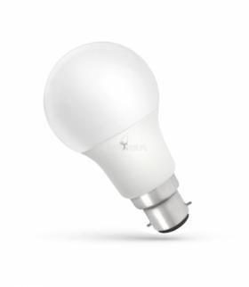 LED GLS B-22 230V 10W CW SPECTRUM WOJ+14281