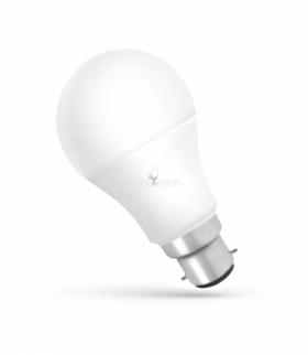LED GLS B-22 230V 13W NW SPECTRUM WOJ+14283