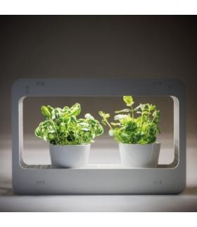 MINIGARDEN LED SIMPLE Zielnik domowy-Oprawa oświetleniowa LED Kanlux 27162