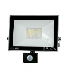 Naświetlacz SMD LED z czujnikiem ruchu KROMA LED S 100W GREY 6500K IDEUS 03708