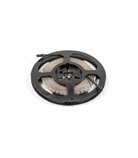 Taśma Flash CCT 2835, 600 LED 30W, bez żelu 8mm, Rolka 5m, 12V. przewody 15cm z męski  mini amp