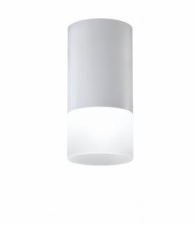 LAMPA SUFITOWA TUBA 1X50W GU10 MROŻONY+SZARY ŚR. 6,4 CM