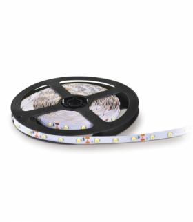 Taśma LED TRAMO 300 diod 3528 IP20 barwa CZERWONA 5m KOBI LIGHT KB3003CZE