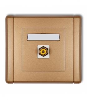FLEXI Gniazdo pojedyncze RCA (typu cinch - żółty pozłacane) Złoty metalik Karlik 8FGRCA-1