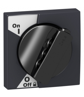 Zestaw napędu drzwiowego Acti9 z czarnym pokrętłem, A9A27005 Schneider Electric
