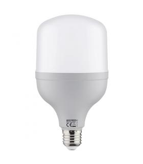 Lampa z diodami SMD LED TORCH LED-20 E27 20W 4000K 03170