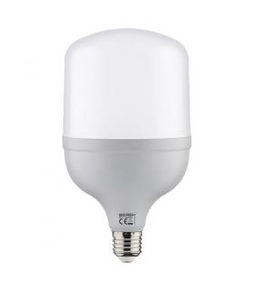 Lampa z diodami SMD LED TORCH LED-20 E27 20W 6500K 03171