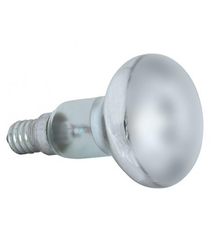 Żarówka reflektorowa R50 40W FROSTED IDEUS 01802