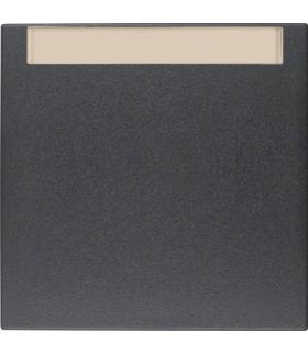 Klawisz z polem opisowym do łączników 1-klawiszowych antracyt mat