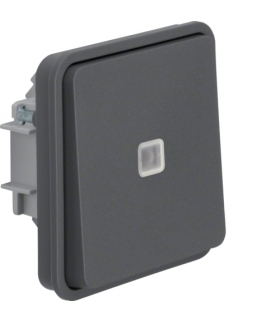 W.1 Moduł łącznika uniwersalny przyciskowy z podświetleniem, IP55, szary Berker 50463525