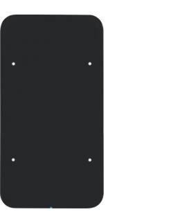 R.1 Sensor dotykowy 2-krotny, szkło, czarny