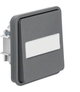 W.1 Moduł łącznika 1-klawiszowy 1-biegunowy przyciskowy z podświetlanym polem opisowym, IP55, szary Berker 50413515