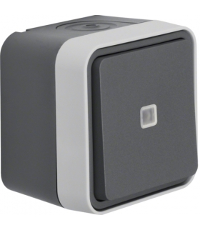 W.1 Łącznik uniwersalny przyciskowy z podświetleniem, kompletny, IP55, szary Berker 50763505