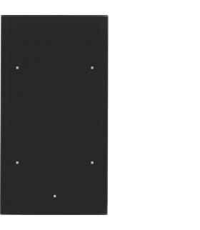 TS Sensor szklany dotykowy 2-krotny, konfigurowalny, szkło, czarny Berker 169205