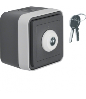 W.1 Łącznik na klucz z zamkiem, klucz wyjmowalny w 3 pozycjach, kompletny, IP55, szary Berker 32723515