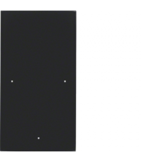 TS Sensor szklany dotykowy 1-krotny, szkło, czarny Berker 168105