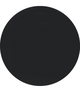 R.X/1930/Glas Przycisk 1-kr,  czarny