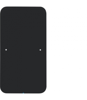 R.1 Sensor dotykowy 1-krotny,  szkło,  czarny