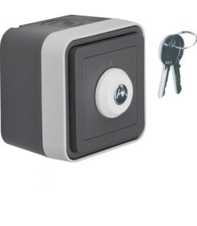 W.1 Łącznik na klucz z zamkiem, klucz wyjmowalny w 2 pozycjach, kompletny, IP55, szary Berker 32713505