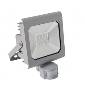 ANTRA LED50W-NW-SE GR Naświetlacz LED Kanlux 25582